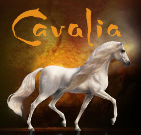 cavalia full A Turning Point in Life